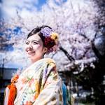 桜 ロケーション撮影