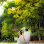 未来に向かって歩み始めた二人へ~結婚するということ~